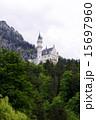 ノイシュヴァンシュタイン城 15697960