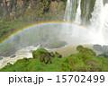 イグアスの滝 イグアス国立公園 世界遺産の写真 15702499