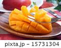 マンゴー カットフルーツ 15731304