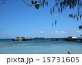 グリーン島 桟橋 海の写真 15731605