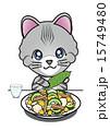 ゴーヤ 沖縄料理 アメリカンショートヘアーのイラスト 15749480