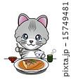 アメリカンショートヘアー 鯖の味噌煮 猫のイラスト 15749481