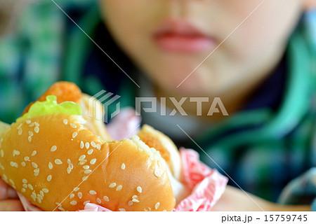 ハンバーガー 15759745