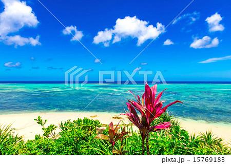 沖縄の海 15769183