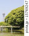 天王寺公園 慶沢池 和気橋の写真 15769247