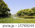 天王寺公園 慶沢池 和気橋の写真 15769249