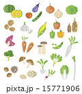 セット 野菜 食材のイラスト 15771906