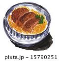 カツ丼15527pix1 15790251