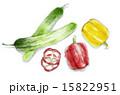 food material_012 15822951