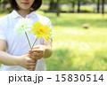 持つ 花 人物の写真 15830514