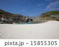 小笠原諸島 南島 世界自然遺産の写真 15855305