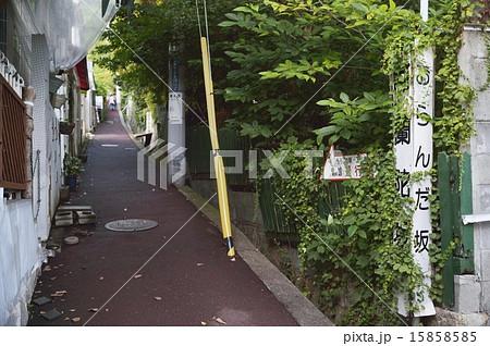 オランダ坂 神戸北野 15858585