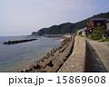天然記念物 笹川流れ 海岸の写真 15869608