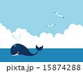 クジラ ベクター 海のイラスト 15874288