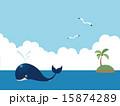 クジラ 15874289