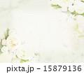 背景 花 ナチュラルのイラスト 15879136