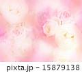 背景 花 ナチュラルのイラスト 15879138
