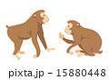 猿 15880448