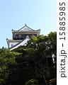 岡崎城 15885985