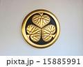 岡崎城 15885991