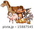 猫 動物 さるのイラスト 15887545