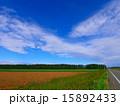 畑 十勝平野 景色の写真 15892433