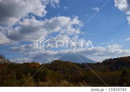 ニセコの紅葉と羊蹄山 15920783