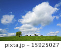 牧場 雲 青空の写真 15925027