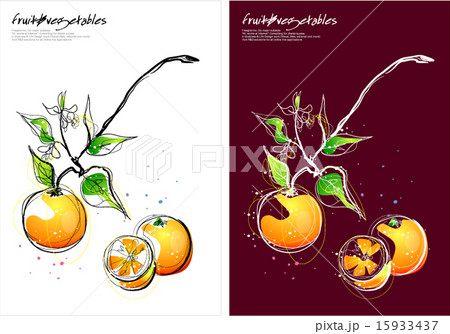 Fruits & Vegetables (005)のイラスト素材 [15933437] - PIXTA