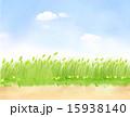 景色 景観 風景のイラスト 15938140