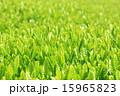 新茶イメージ 15965823