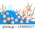 新春 梅の木 正月のイラスト 15969527
