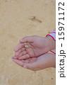 生物 ヤドカリ 手のひらの写真 15971172