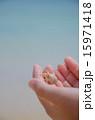生物 ヤドカリ 手のひらの写真 15971418