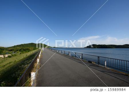 平荘湖 ジョギングコース 15989984