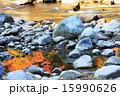 香嵐渓 15990626