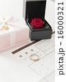 入籍 婚姻 婚姻届けの写真 16000321