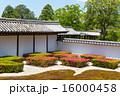 東福寺 - 皐月の庭園 16000458