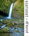 浄蓮の滝 16001859