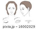 メイク用顔・目/唇アップイラスト 16002029
