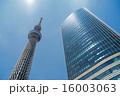 東京スカイツリー 16003063