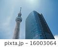 東京スカイツリー 16003064