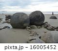 モエラキボルダー 南島 ニュージーランドの写真 16005452