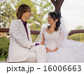 Couple love bride and groom posing sitting on wood 16006663
