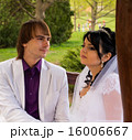 Couple love bride and groom posing sitting on wood 16006667
