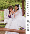 Couple love bride and groom posing sitting on wood 16006682