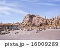 ウユニ 中南米 サボテンの写真 16009289