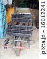 農作業 16012241