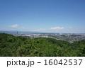 都立長沼公園の春 16042537