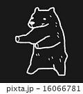 ベクトル 北極 熊のイラスト 16066781